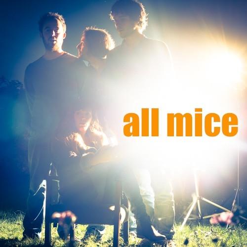 All Mice's avatar