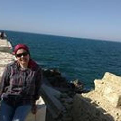 Hanan Nassef 1's avatar