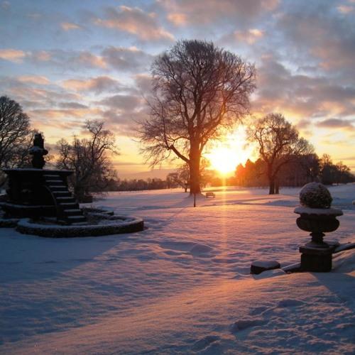 The Winter Sun Project's avatar
