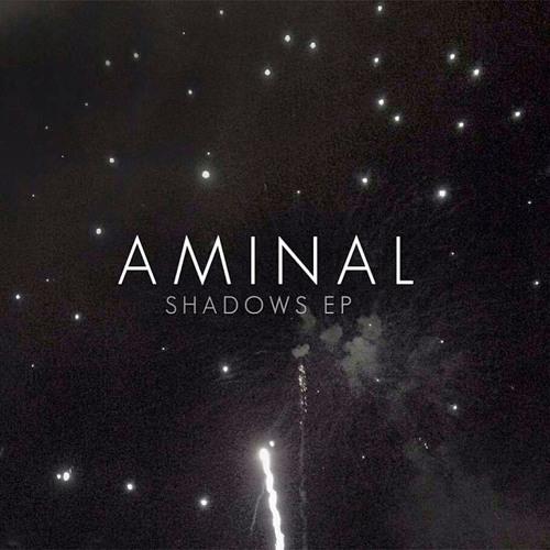 AMINAL's avatar