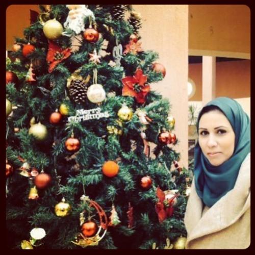 Ehssan Elbishly's avatar