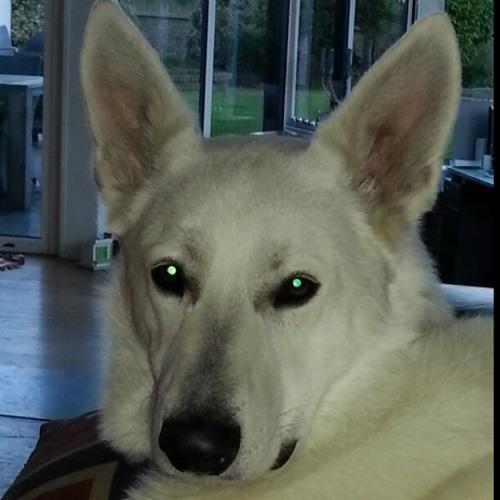 Kaiiitje's avatar