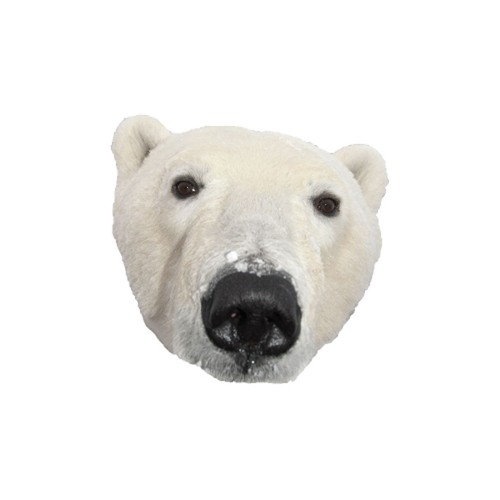 A Polar Bear's avatar
