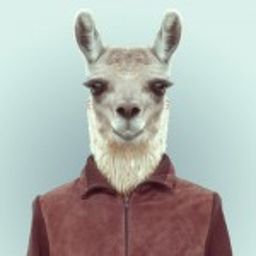 EDMOON's avatar