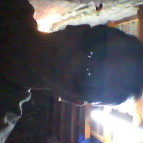 fiestaaaa's avatar