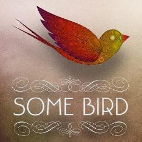 somebirdmusic's avatar