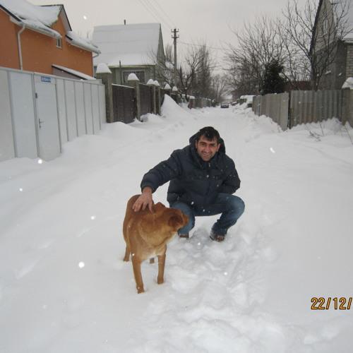 tofiq.bayramov's avatar