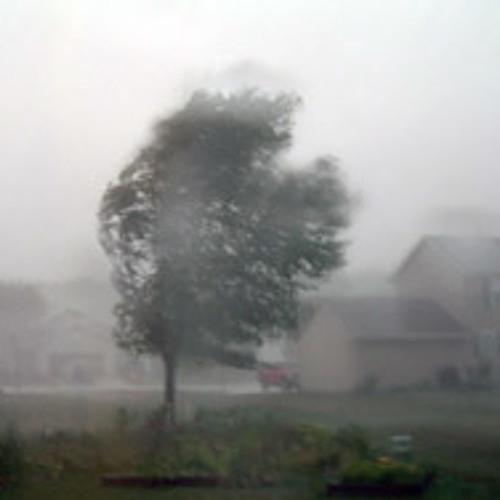 wind delay's avatar