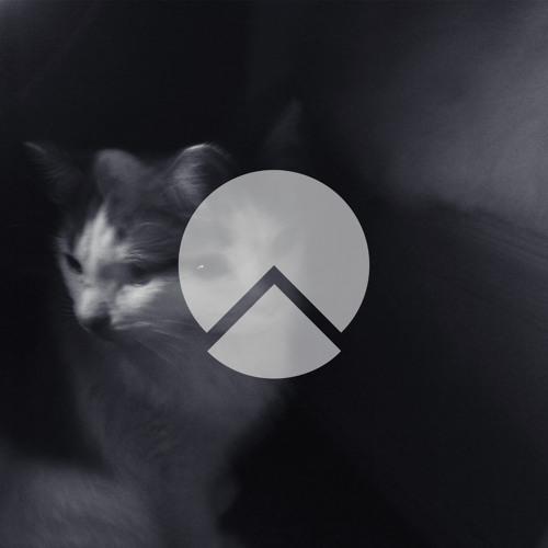 Devise Records's avatar