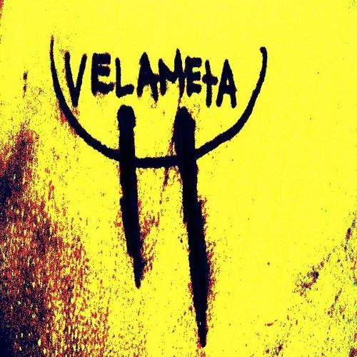 VELAMETA's avatar