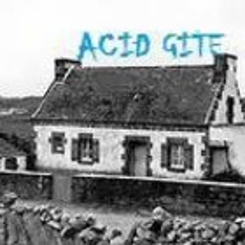 Acid Gite Records's avatar