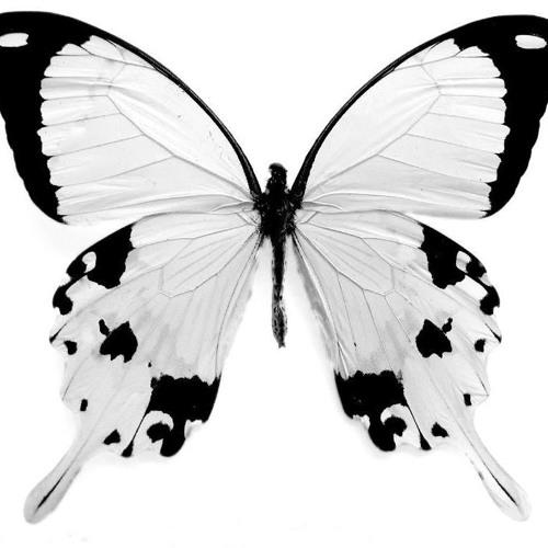 Krysalys's avatar