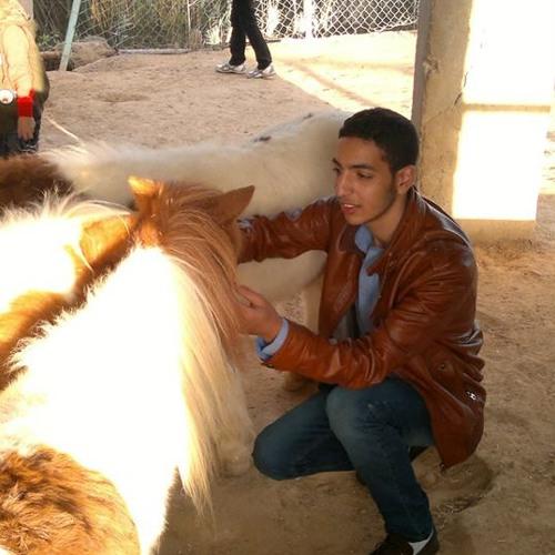 Ahmed Atef 212's avatar