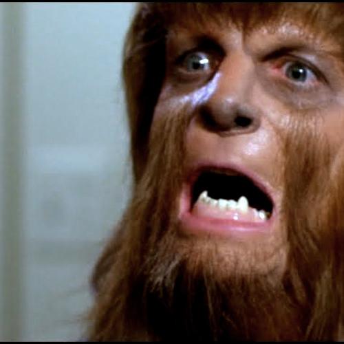 Row Lobo's avatar