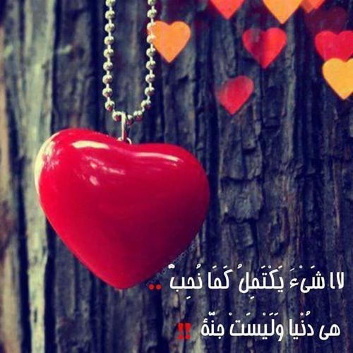 Gaith Hussein's avatar