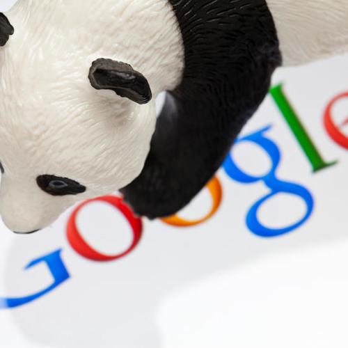 panda-seo's avatar