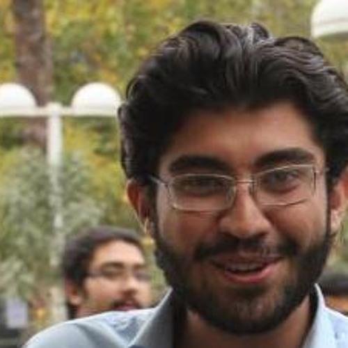mohammadreza mafi's avatar