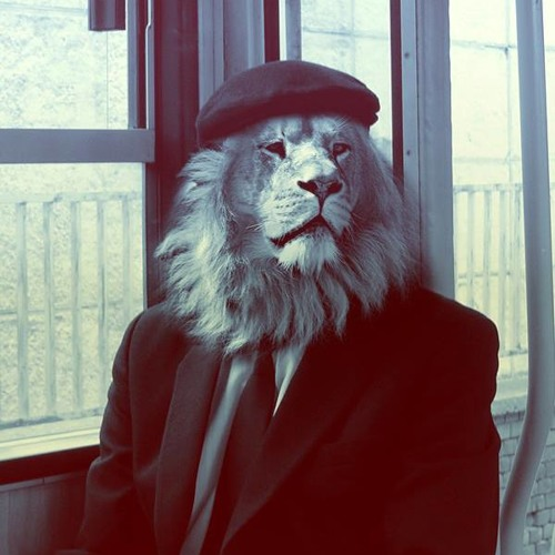 Ahmed Elsayed 1's avatar
