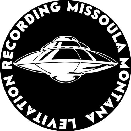 Levitation Recording's avatar