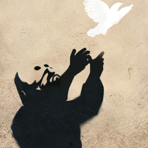flysvin's avatar
