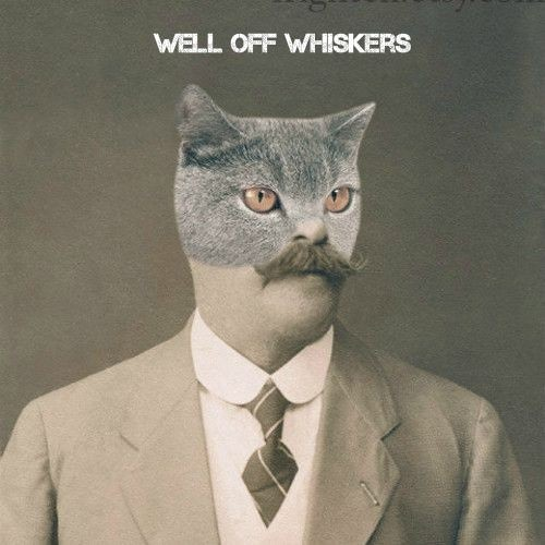 Well Off Whiskers's avatar
