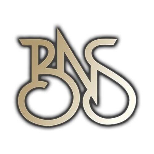 OfficialBNS's avatar