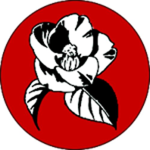 kamelieinsel's avatar