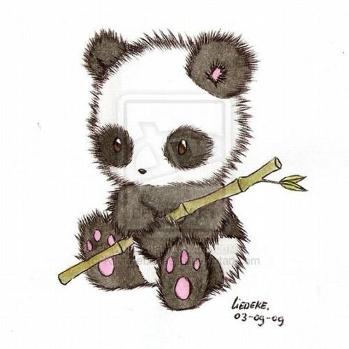 panda_seo's avatar