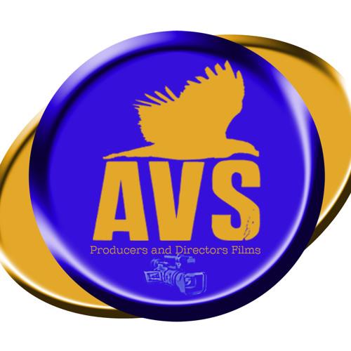 AVS Music Catalogue's avatar