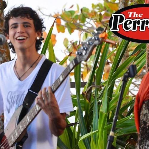 Vinicius Miranda Nunes's avatar