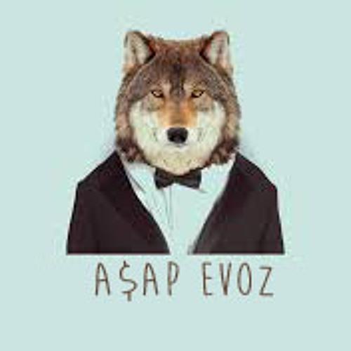 Evoz Strezow's avatar