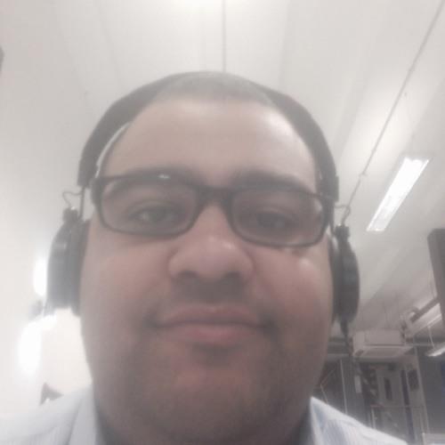 BR0WNB34R's avatar