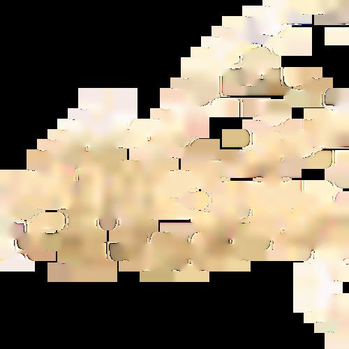 vakucosan's avatar