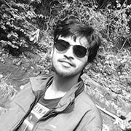 Amrit Raj 2's avatar