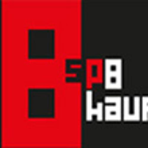 sp8kauf's avatar