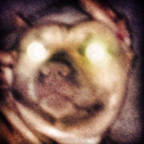 The Marcianos's avatar