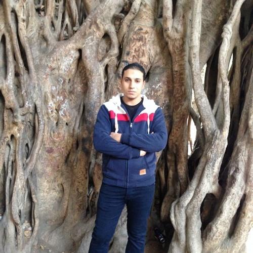 Mahmoud fox's avatar