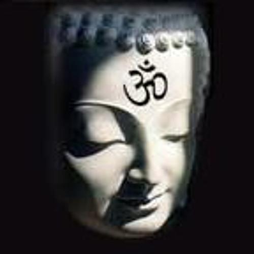 humanoidvani's avatar