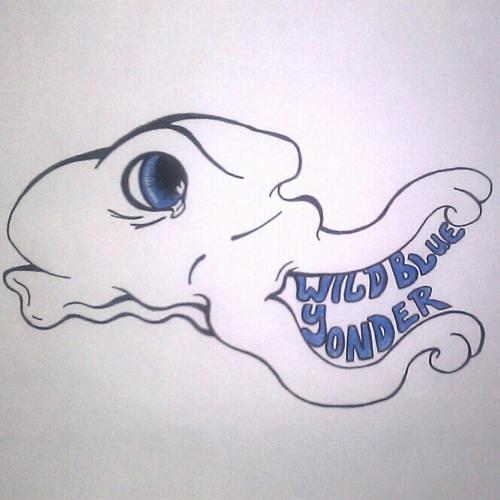 Wild Blue Yonder's avatar