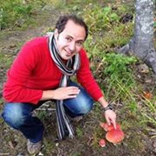 Mostafa Moussa 5's avatar