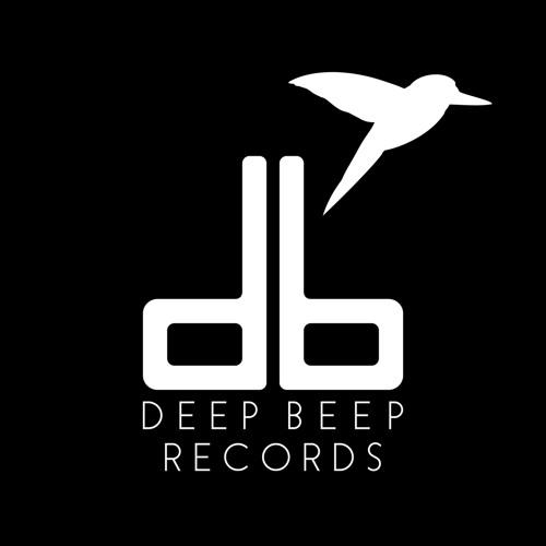 Deep Beep Records's avatar