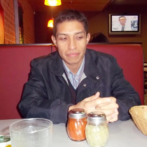 Sergio Irwin Niño Mendoza's avatar