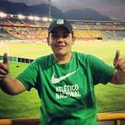 Daniel Toro Camelo's avatar