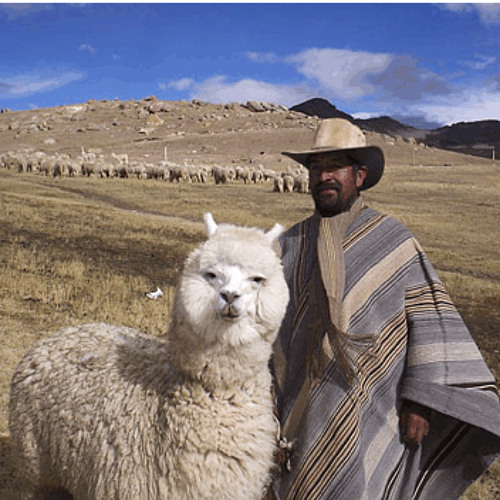 BoliviaSC - relajarse's avatar
