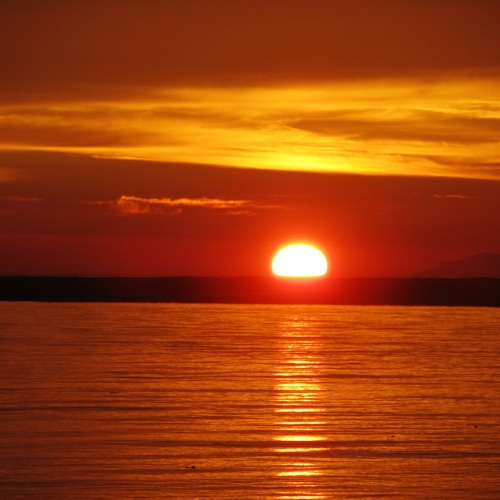 sun sets's avatar