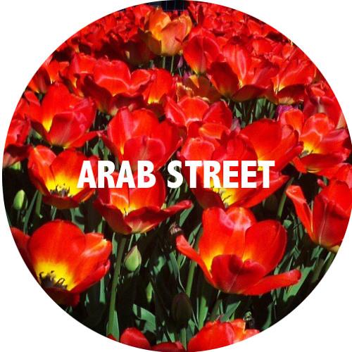 ARAB STREET's avatar