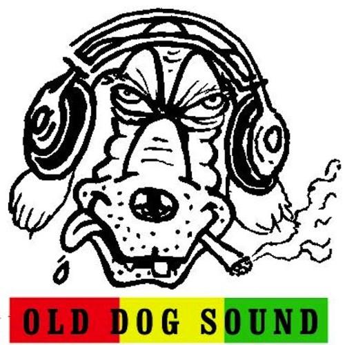 pupa_dog's avatar