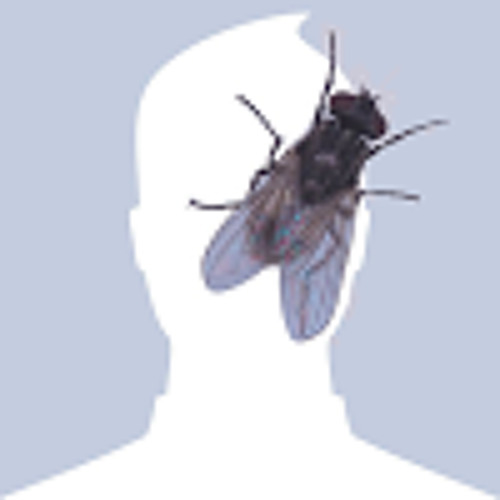 demijan666's avatar