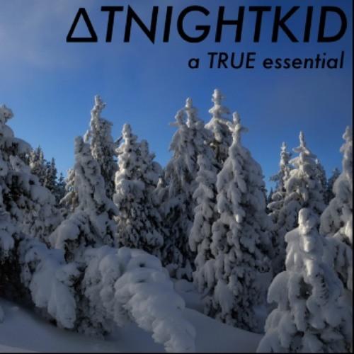 ΔTNIGHTKID's avatar