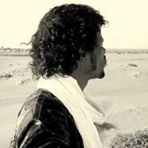 Ahmet Ag Ayyer's avatar